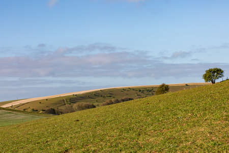 A Rural South Downs Landscape on a Sunny Spring Day