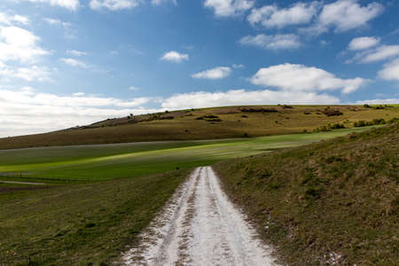 A Chalk Pathway in the South Downs on a Sunny Spring Morning
