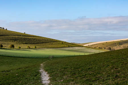 A Pathway through the South Downs on a Sunny Spring Morning