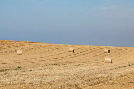 Hay bales in the Isle of Wight countryside on a sunny summers morning