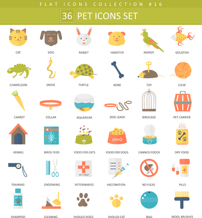 a snake in a bag: Vector pet color flat icon set. Elegant style design