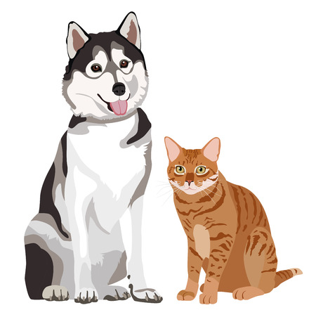 animals together: Dog and cat friends. Animals standing together. illustration