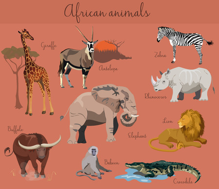 lion cartoon: Wild african animals set with nature elements isolated.