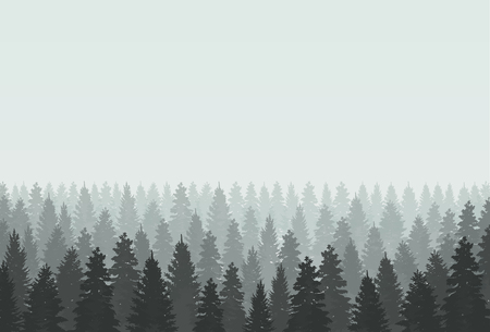 coniferous: Musterious coniferous forest silhouette template. Vector illustration