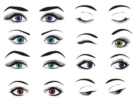 mujer femenina ojos y las cejas conjunto colección de imágenes Vectores