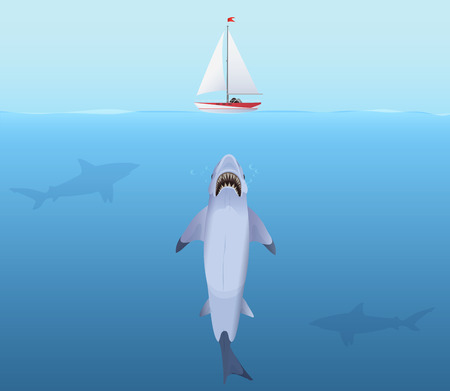great white shark: Hungry Shark with big jaw Attack yacht sheep from the water