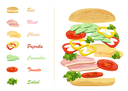 Sandwich ingredients with text infographics. Floating hamburger