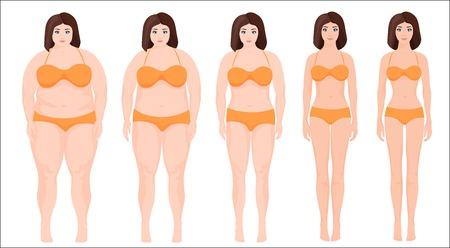 Vrouw dieet concept. vrouw afslanken podium vooruitgang. Vrouwelijke voor en na een dieet. Vector Illustratie