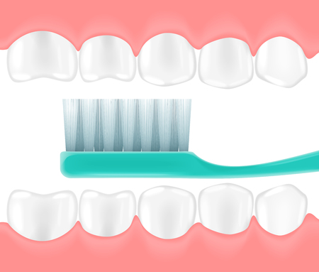 enjuague bucal: The vector illustration of a mouth with the toothbrush in it. Dentist teeth concept.