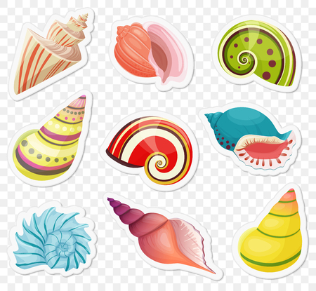 Vector cartoon sea shells stickers set on the transperant alpha background. Banco de Imagens - 78912496