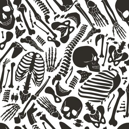 두개골 및 기타 다양 한 단일 인간의 인간의 뼈와 벡터 인간의 골격 원활한 패턴.