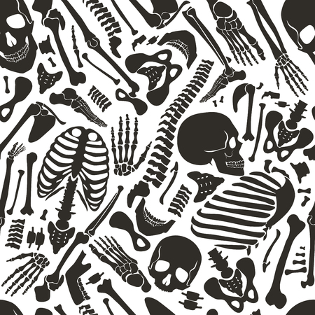 Vector human skeleton seamless pattern with skulls and other various single human parts bones. Illustration