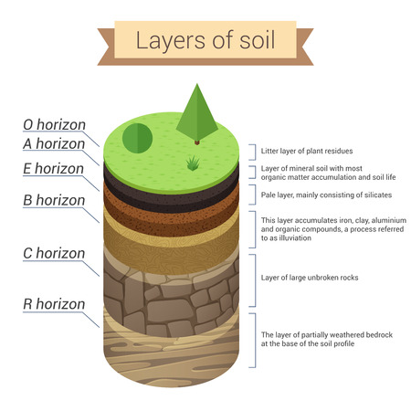Soil layers. Soil is a mixture of plant residue and fine mineral particles, which form layers. Vector diagram.