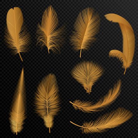 Realistic luxury golden tribal feathers set isolated on black