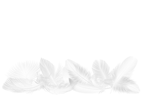 Vector realistic soft white falling fluffy twirled feathers set isolated on on white Stock Illustratie