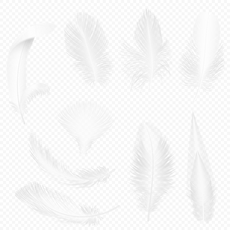 Realistic soft white feathers set on transparent alpha background vector illustration