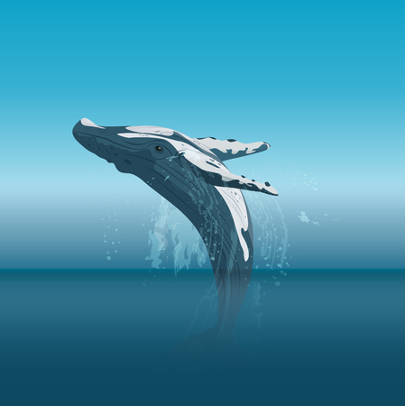Jumping cartoon humpback whale in the ocean vector illustration.
