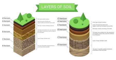 Bildung isometrisches Diagramm und detaillierte Beschreibung der Bodenschichten. Pflanzenreste, grünes Gras, feine Mineralpartikel, Sand, Ton, Humus und Steine Vektorgrafik.