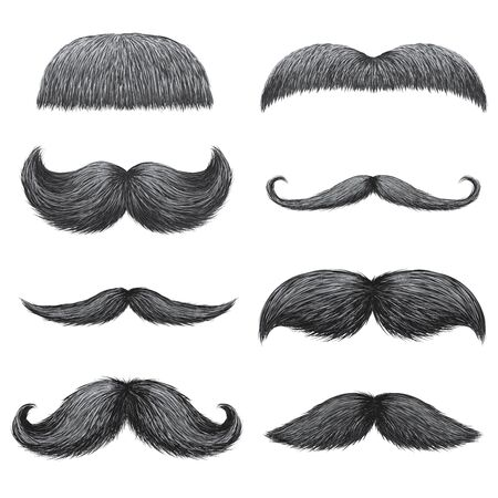 Different styles of male realistic mustaches set. Chevron, Dali, english, handlebar, imperial, lampshade, painter brush, classic relaxed, thick thin man mustaches isolated. Vecteurs