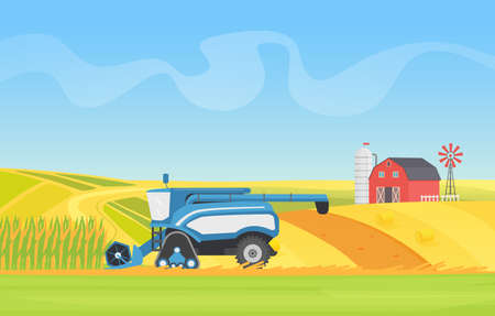 Corn harvesting combine machine working in agricultural field landscape vector illustration. Cartoon countryside natural agro farming technology, harvester equipment cropping cereal plants background Ilustração