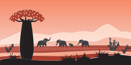 African animals in wild nature landscape of Africa vector illustration. Cartoon safari panorama scenery with tropical flora and fauna, silhouettes of elephants, baobab and cacti in prairie savannah Ilustrace