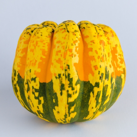 squash vegetable: Colorful squash vegetable with a green, yellow and orange pattern