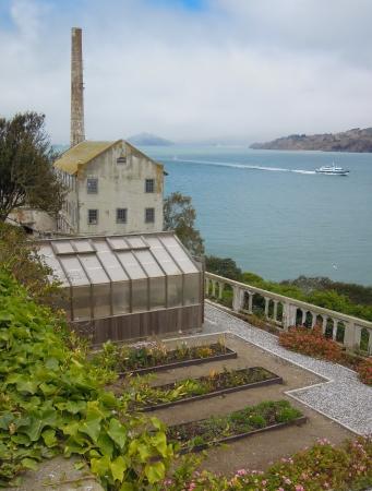 The gardens on Alcatraz Island