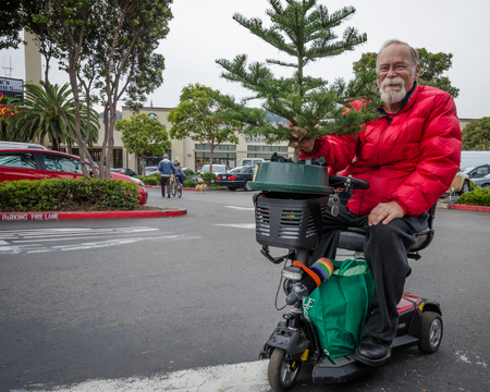purchased: San Francisco, California, December 1, 2015 - Resident of the Castro District on a scooter is taking home a Christmas tree he had just purchased at a lot in a shopping mall. Editorial