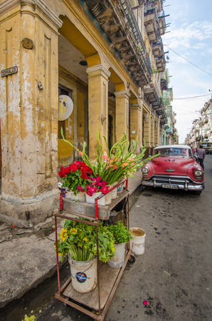 HAVANA - CUBA  JUNE 10, 2016:  Flowers for sale are set outside a shop with a classic car parked down the street of decaying and deteriorating buildings in the historic La Habana Vieja neighborhood.