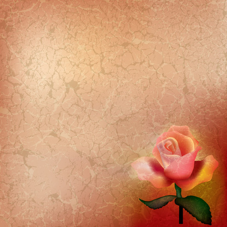 abstract grunge illustration with red rose on beige Vector