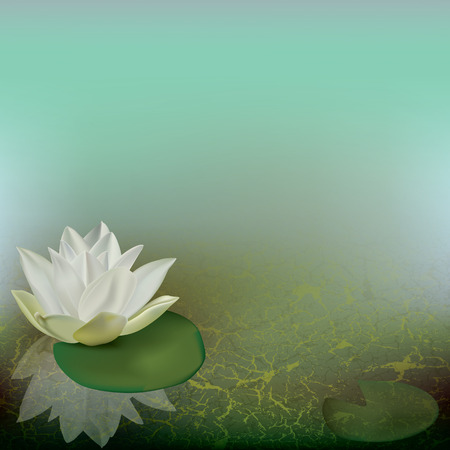 abstract floral illustration with lotus on green Illustration