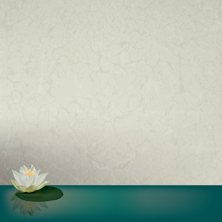 abstract floral illustration with white lotus on cracked background Vector