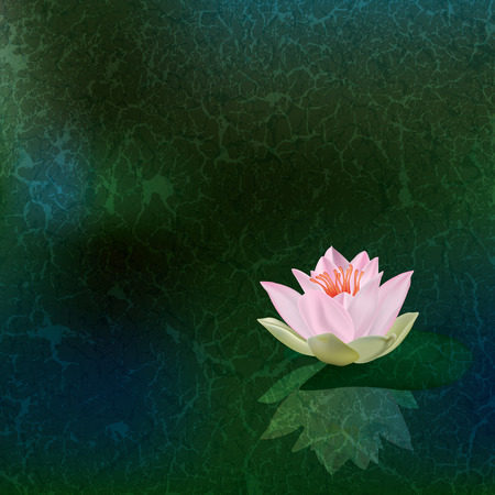 pond water: abstract floral illustration with pink lotus on green Illustration