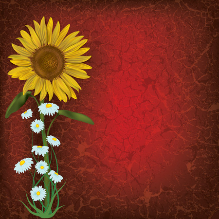 grunge floral illustration with sunflower and chamomiles on red Vector