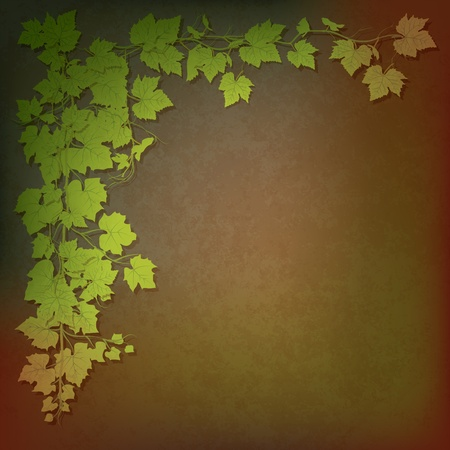 grunge illustration with grape leaves on brown Vector