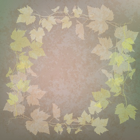 grunge illustration with grape leaves on green background Vector