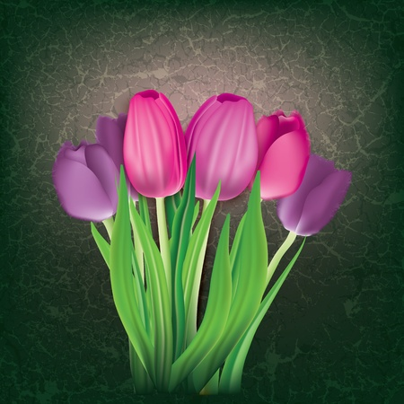 art painting: abstract floral background with pink tulips on black Illustration
