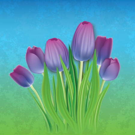 abstract floral background with purple tulips on blue Vector