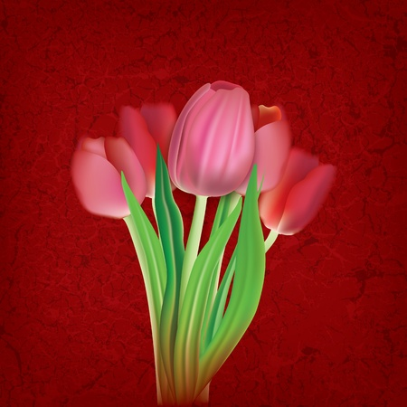 abstract floral illustration with tulips on cracked red background Vector