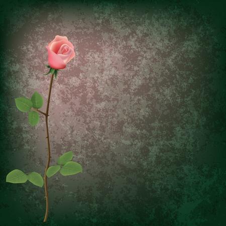 jednolitego: abstrakcyjne grunge floral background z różą na szaro