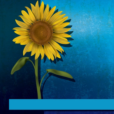 grunge floral illustration with sunflower on blue background Vector