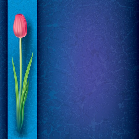 abstract grunge floral background with red tulip on blue Vector