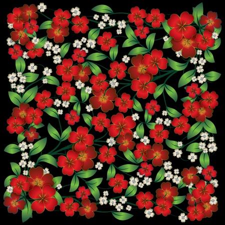 spring red flowers isolated on a black background Vector