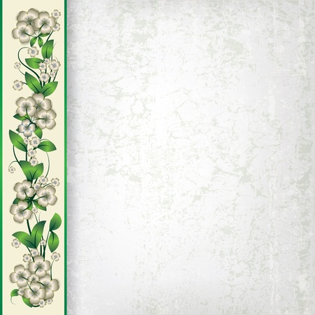 spotted flower: abstract grey grunge background with white spring flowers
