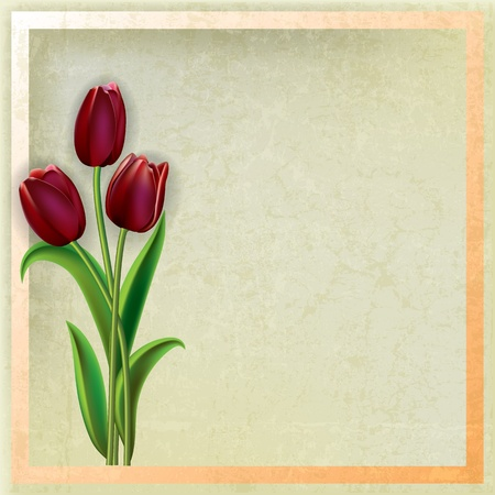 spotted flower: abstract beige grunge background with red tulips