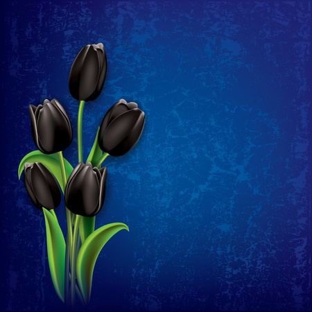 abstract floral grunge background with black tulips on blue Vector