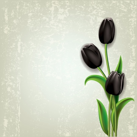 abstract floral grunge background with black tulips Vector