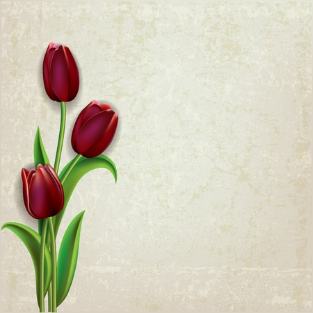 abstract floral grunge background with red tulips on beige
