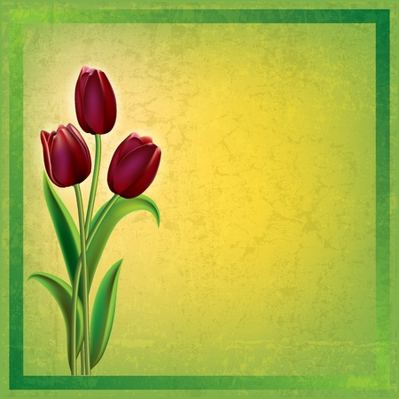 abstract green grunge background with red tulips Vector