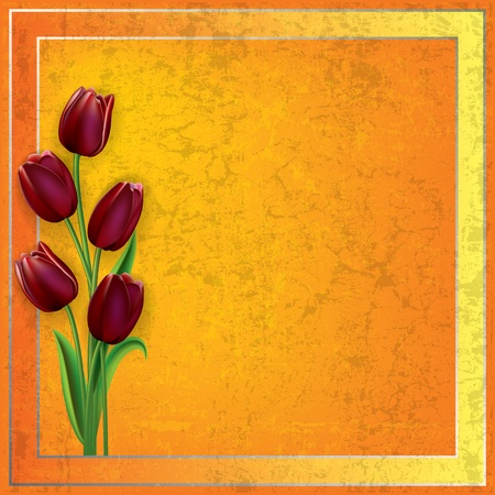 spotted flower: abstract grunge yellow background with red tulips Illustration